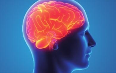 Improving Life After Brain Injury – Leaflet